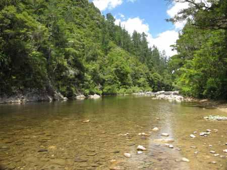 Tairua River at Broken Hiills campground..